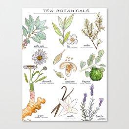 tea botanicals | series Canvas Print