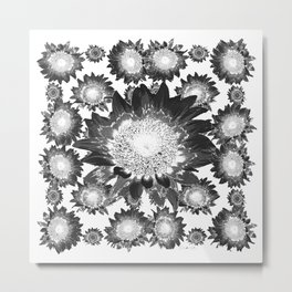 Decorative Black & White Grey Abstracted Floral Art Metal Print