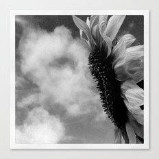 FLOWER 014 Canvas Print