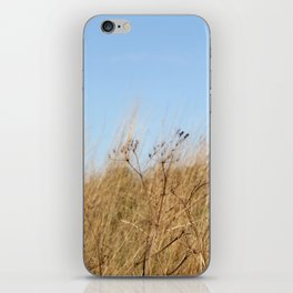 Verstreut iPhone Skin