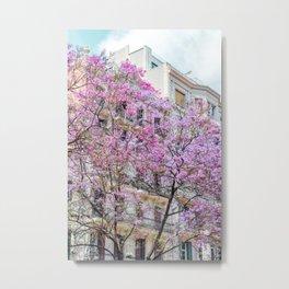 Pink Flowers In Barcelona Print, Sprint Time Art Print, Urban City Print, Modern Wall Art, Spain Photography Metal Print