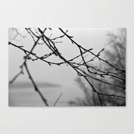 A Whisper No. 01 Canvas Print