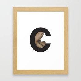 C. Framed Art Print