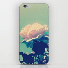 Soft Baby Pink Roses with Mint Blue Sky Backgroud iPhone Skin