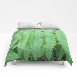 Fern Symmetry Comforters