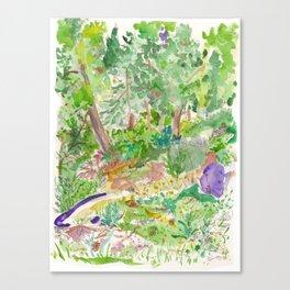 Jerusalem Forest Canvas Print