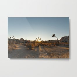 Joshua Tree Sunburst Metal Print