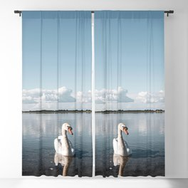 WHITE - SWAN - ON - BODY - OF - WATER - PHOTOGRAPHY Blackout Curtain