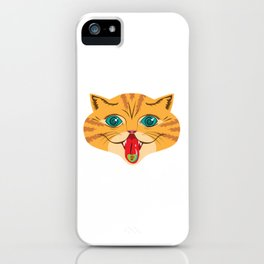 Kiss Me Ginger Cat iPhone Case