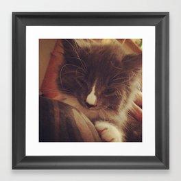 smize kitty Framed Art Print