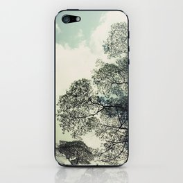 patterns of the tree iPhone Skin