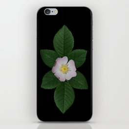 Dog rose iPhone Skin
