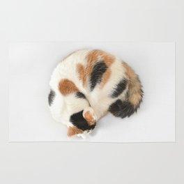Sleeping Calico Cat Rug