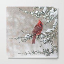 Snow Scene Cardinal Metal Print