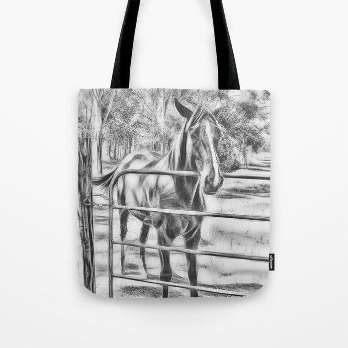 Calm horse standing near gate in Queensland Tote Bag