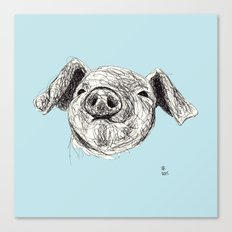 Baby Animals - Pig (Blue) Canvas Print