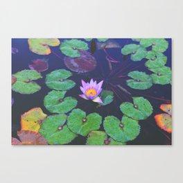 Aqua Love Canvas Print
