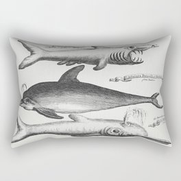 Vintage Illustration of fishes published in 1745-1747 by Thomas Astley Rectangular Pillow