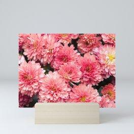 Autumn Kiss Chrysanthemums #1 #floral #art #Society6 Mini Art Print