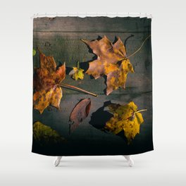 Fall Season in its many Shades. Shower Curtain