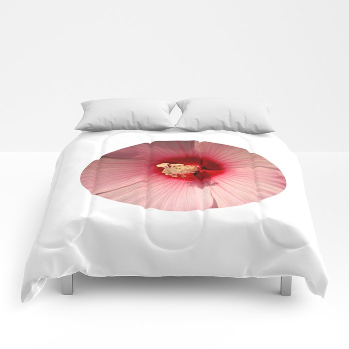 Pink Hibiscus Close Up Flower Photography Comforters By Manitarka
