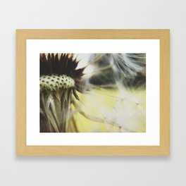 Dandelion: Seeds Horizontal Framed Art Print