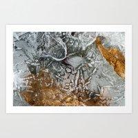 Almost Free 1 Art Print