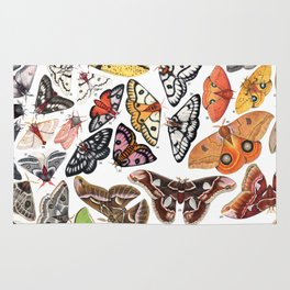 Saturniid Moths of North America Rug