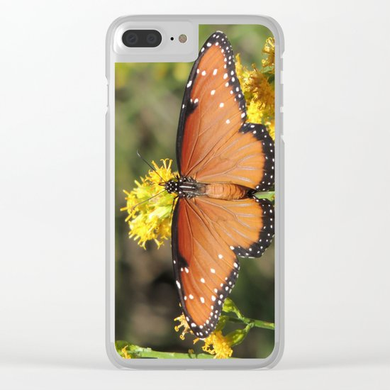 Queen Butterfly on Rubber Rabbitbrush in Claremont CA Clear iPhone Case