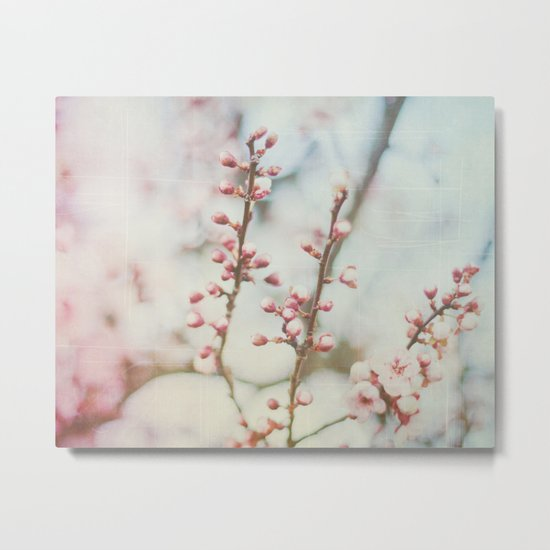 Small & Soft Metal Print