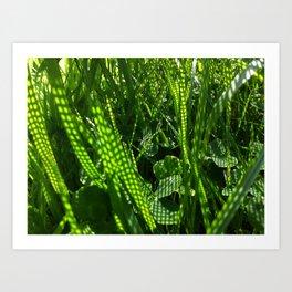 Grass Dots Art Print