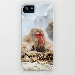 The Japanese macaque also known as the snow monkey iPhone Case