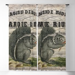 french country scripts fall autumn woodland animal grey squirrel Blackout Curtain