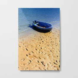 Shore Footed Metal Print