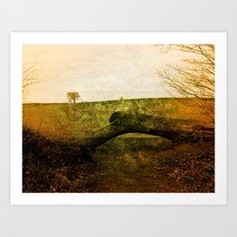 Textured Field Art Print
