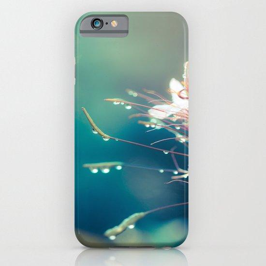 Seeking iPhone & iPod Case
