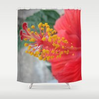 hibiscus Shower Curtains featuring Hibiscus by BACK to THE ROOTS
