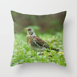 Fieldfare Throw Pillow