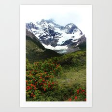 Torres Del Paine, Patagonia Art Print