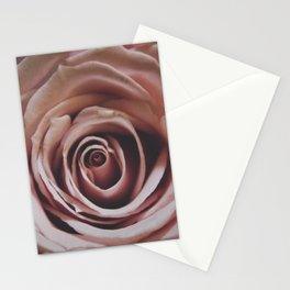 Single Rose 3 Stationery Cards