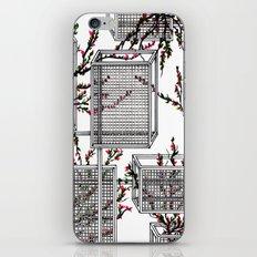 geo spring iPhone & iPod Skin