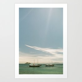 Two Schooners Art Print