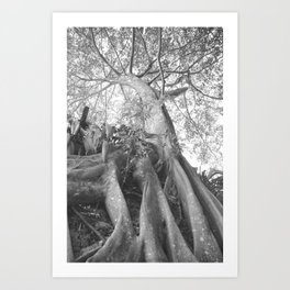 Natures Statue Art Print