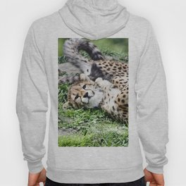 Cheetah20150907 Hoody