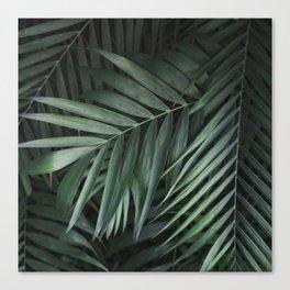 Elegant Green Tropical Leaves Canvas Print