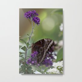 Peaceful Purple Metal Print