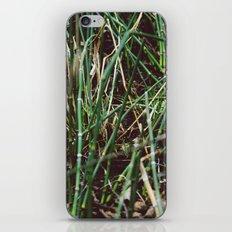 Shoots iPhone & iPod Skin