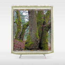 TWO BIG LEAF MAPLE TREES Shower Curtain