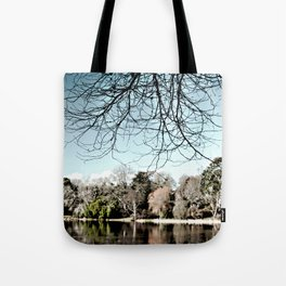 Mount Stewart Lake Tote Bag