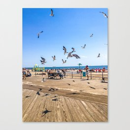 Seagulls of Coney Island Canvas Print